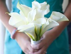 永恒的爱情 新娘马蹄莲手捧花