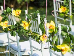 婚礼上的椅背鲜花装饰图片