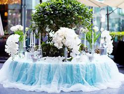蓝色系列北欧清新户外婚礼