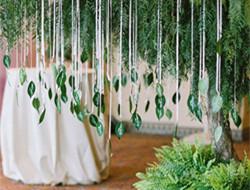 绿色环保 植物绿叶户外婚礼