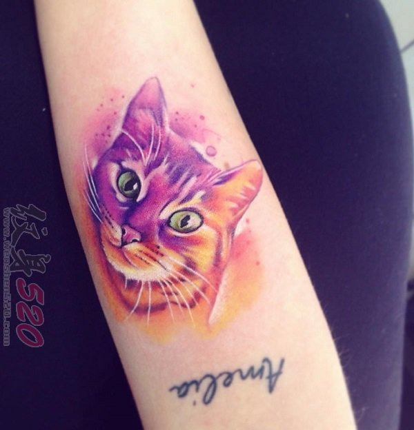 多款关于猫咪的彩绘水彩创意可爱纹身图案