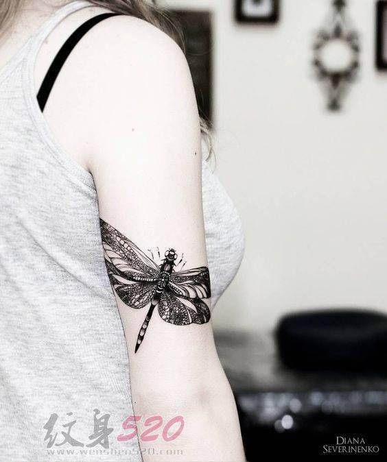 多款关于蜻蜓的黑色线条素描创意个性纹身图案