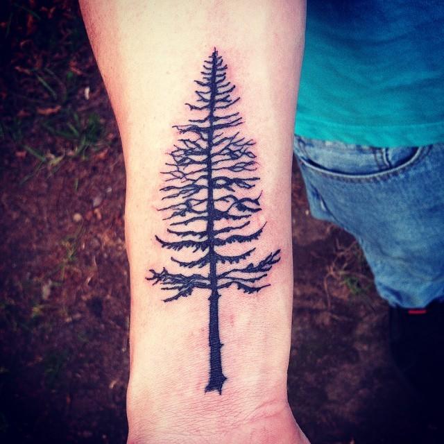 小臂黑色的松树纹身图案图片