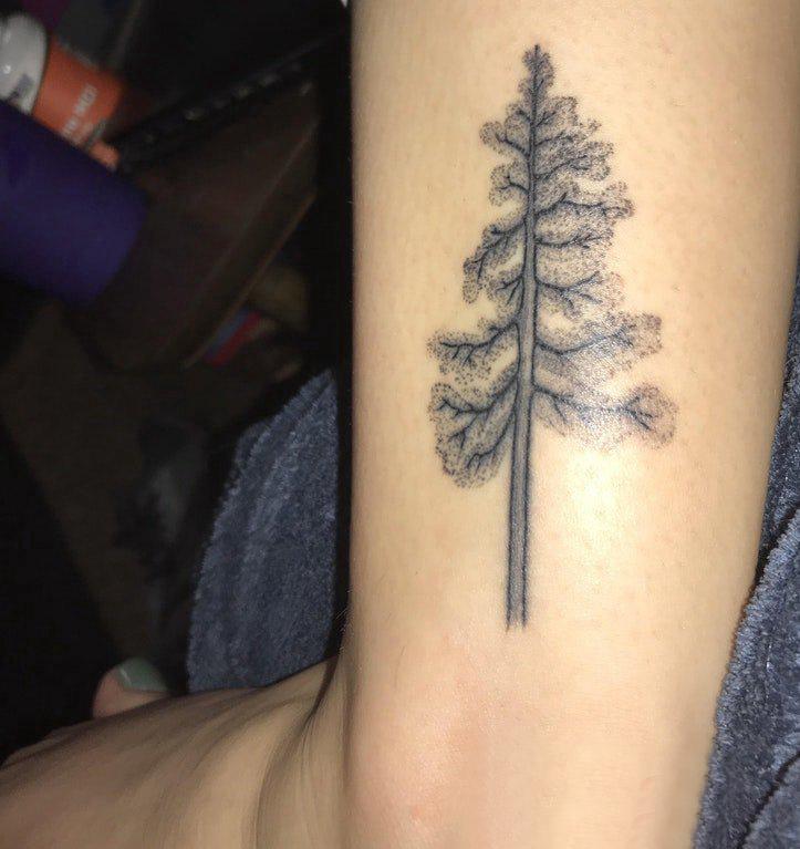植物纹身 男生手臂上茂密的大树纹身图片