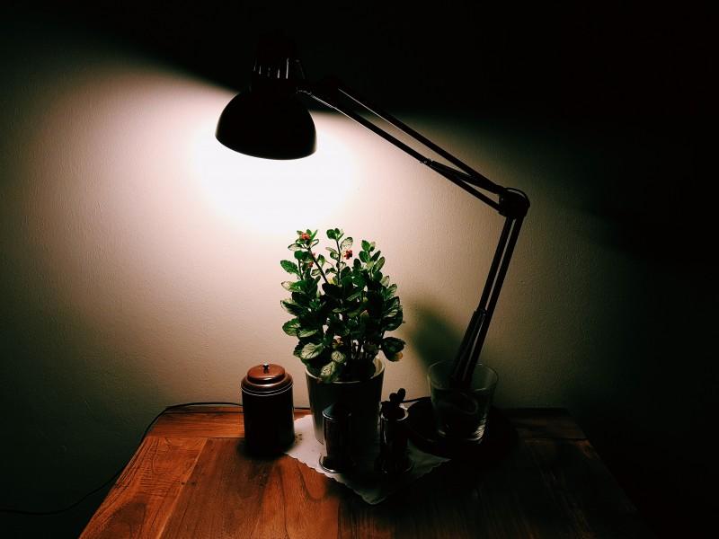 桌子上的台灯图片(11张)
