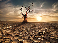 龟裂土地大自然的奇观美景图片