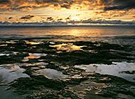 孤寂而泛黄的日出日落风景图片