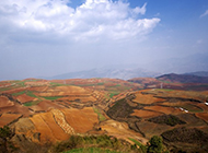 俯拍黄土地梯田优美自然风景图片