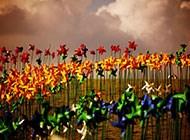 浪漫迷人的风车丛高清图片