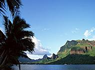 沙滩椰林海滨唯美风景图片
