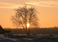 日落天空充斥黄昏景色的唯美风光