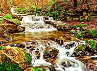 望庐山瀑布风景画