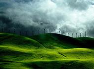 春天绿色风景护眼壁纸