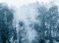 烟雨张家界美景