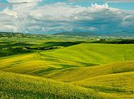 美丽的农村田野风景图片