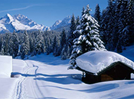 迷情冬季雪景精美壁纸赏析