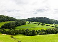 大草原绿色小清新优美风景桌面壁纸