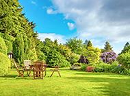 夏天庭院园林风景高清图片