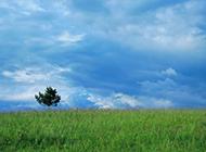 蓝天白云绿草地唯美风景图片壁纸