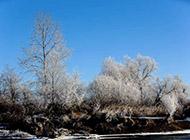 家乡的冬天雪景精美壁纸赏析