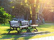 夏天公园风景摄影图片欣赏