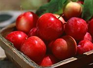 红嫩嫩的苹果诱惑高清水果图片