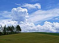 蓝天绿地蓝绿相接的自然美景