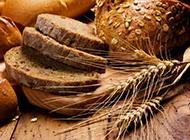 面包牛排精美营养美食大餐