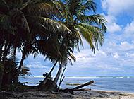 海滨淡蓝水天风光美景图片