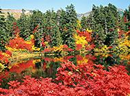 大自然唯美风景图片合集