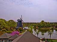上海鲜花港风景高清图片欣赏