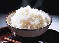 米饭飘香四溢图片大全