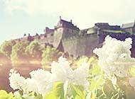 超唯美自然浪漫初春风景高清选图