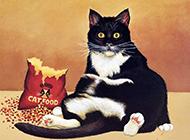 可爱猫咪精美手绘漫画高清大图
