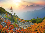 美丽的秋天风景摄影图片
