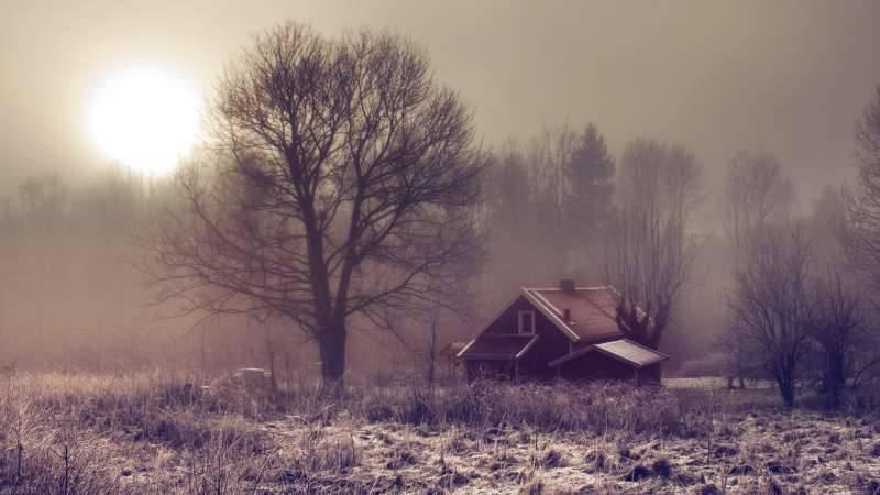 2015冬日圣诞雪景摄影图片