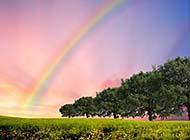 光芒万丈的彩虹风光高清图集