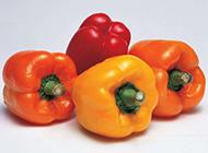 彩色辣椒图片味道香甜