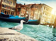 历史古都威尼斯水城小清新桌面壁纸
