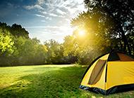 青青的草地上旅游帐篷图片