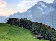 最美绿色草原风景图片壁纸