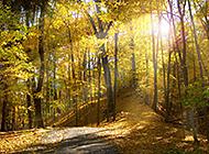 自然风光美景宛如诗画般美丽迷人
