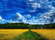 美丽的蓝天白云与大自然风景壁纸