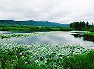 夏天荷花山水风景图片欣赏
