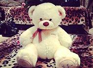 温暖小熊见证甜蜜温馨爱情选图