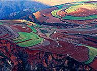 东川红土地风景桌面壁纸