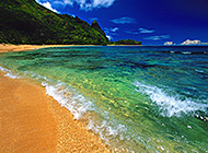 沙滩椰林夏威夷海滨唯美绿景