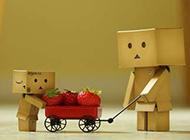 纸盒人的幸福生活组图