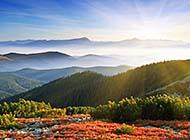 大山里的雾唯美风景高清组图