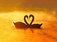 大自然创意爱心梦幻唯美高清风景图片